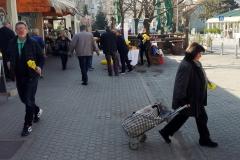 Međunarodni Dan narcisa u GČ Podsused-Vrapče